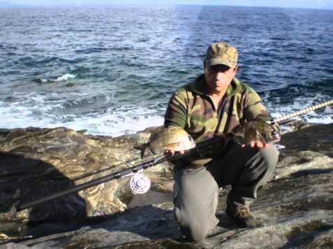 La pêche russe moskva le centre kv