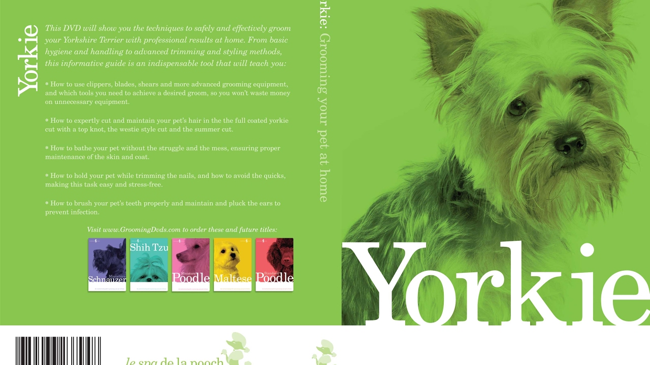 Yorkshire Terrier Yorkie Dog Grooming Instructional How To Video