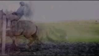 Клип конный спорт ( я не буду больше боятся )