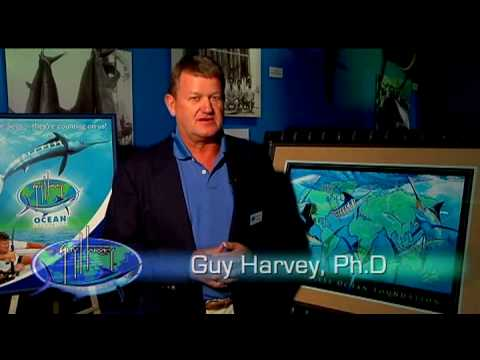 Guy Harvey Ocean Foundation PSA Marine Conservation and Ocean Awareness