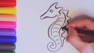 Как нарисовать морского конька поэтапно. Учимся рисовать морских обитателей