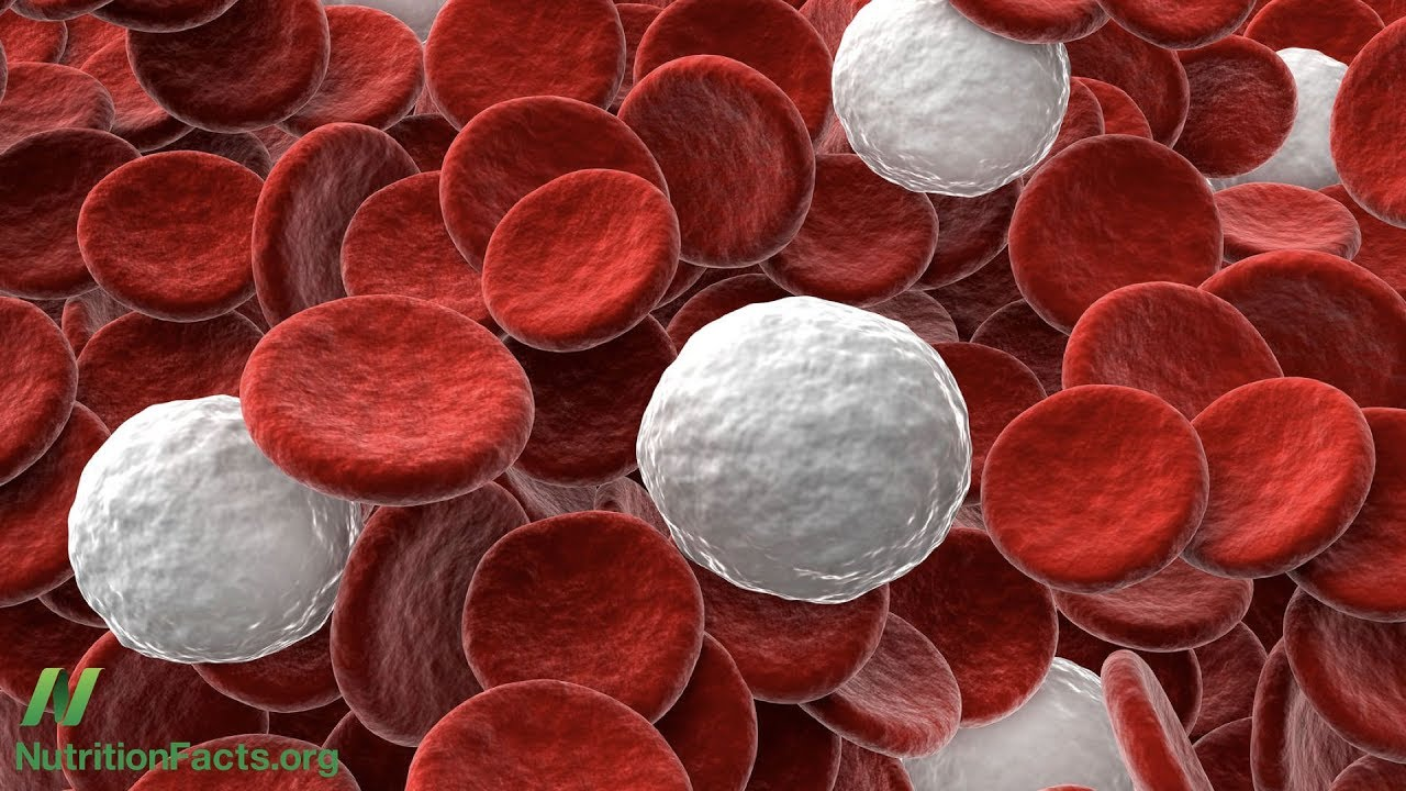 What Is the Ideal White Blood Cell Count? | NutritionFacts org