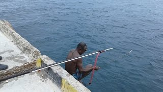 Panah Ikan Besar di Pelabuhan Waren Waropen Papua