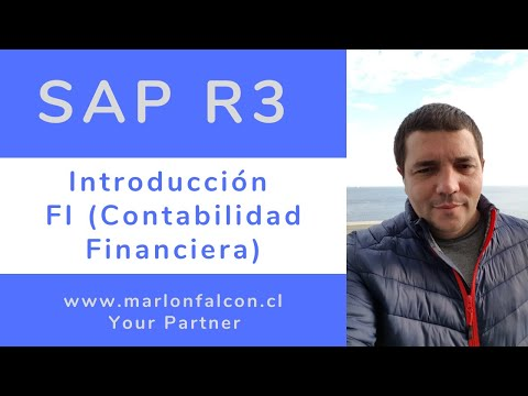 6.1 Curso SAP FI | Clase 1 Introducción a FI (Contabilidad Financiera) - 123sap.cl - Gratis