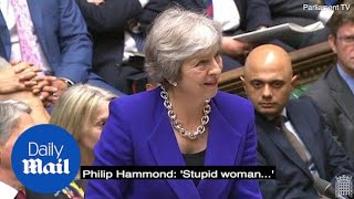 Philip Hammond mutters 'stupid woman' to Andrea Jenkyns at PMQs