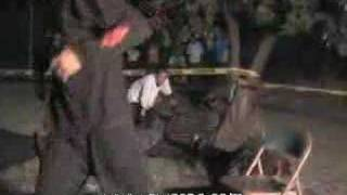 Grand Lizard vs Nate Vicious vs Ray Sharp