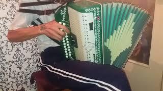 Старинная татарская мелодия ( под гармошку Беларусь 2.01.2018 )