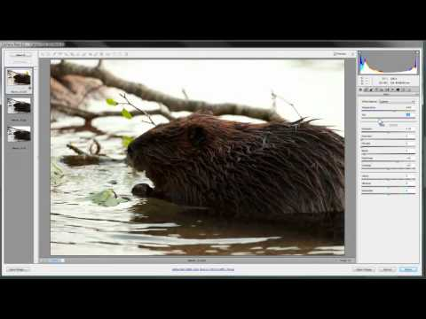How to Open and Edit Images in Adobe Camera Raw CS5