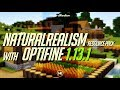 How to get Realistic Texture Pack in Minecraft 1.13.1 - download install NaturalRealism resourcepack
