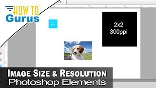 Photoshop Elements Beginners Guide Why Your Picture Imports Too Small Tutorial 2018 15 14 13 12