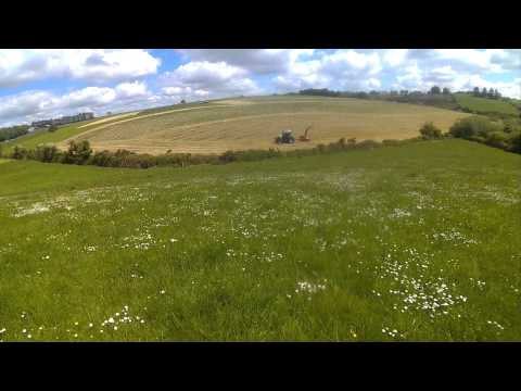 silage 2015