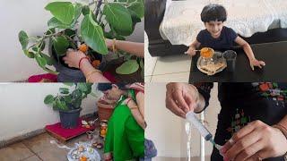 वटपोर्णिमा vlog ।मराठी vloger ।Indian lifestyle with gauri.