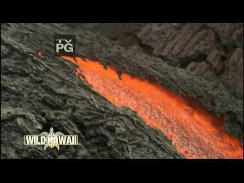 Wild Hawaii - Land of Fire