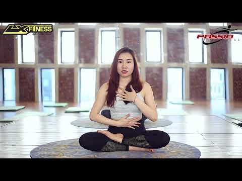 YOGA - BÀI 1: Hướng dẫn hít thở bằng bụng