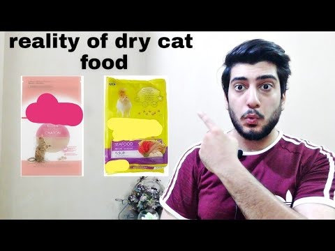 Best Dry Cat Food ( Kibble)   Cat Food  how To Choose Best Dry Cat Food   CHUBBY MEOWS