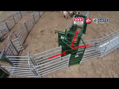 Q-Gate | 2-Way Cattle Diversion | Cattle Equipment | Arrowquip