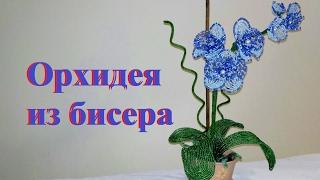 ОРХИДЕЯ из бисера | Цветы из бисера / Бисероплетение