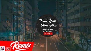 Tình Yêu Hoa Gió Remix - Trương Thế Vinh | DJ Lê Trình Remix | H&L Music