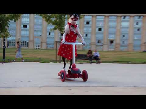 Dog Wearing Red Dress Rides Scooter