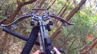 2017 crossbow deer hunt