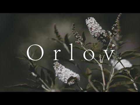 Tony Orlov