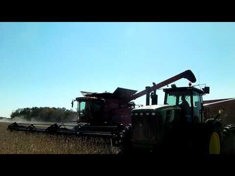 Tom Farms CaseIH 8120 Combine.MP4