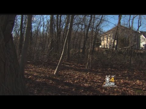 Site Of Salem Witch Hangings Discovered