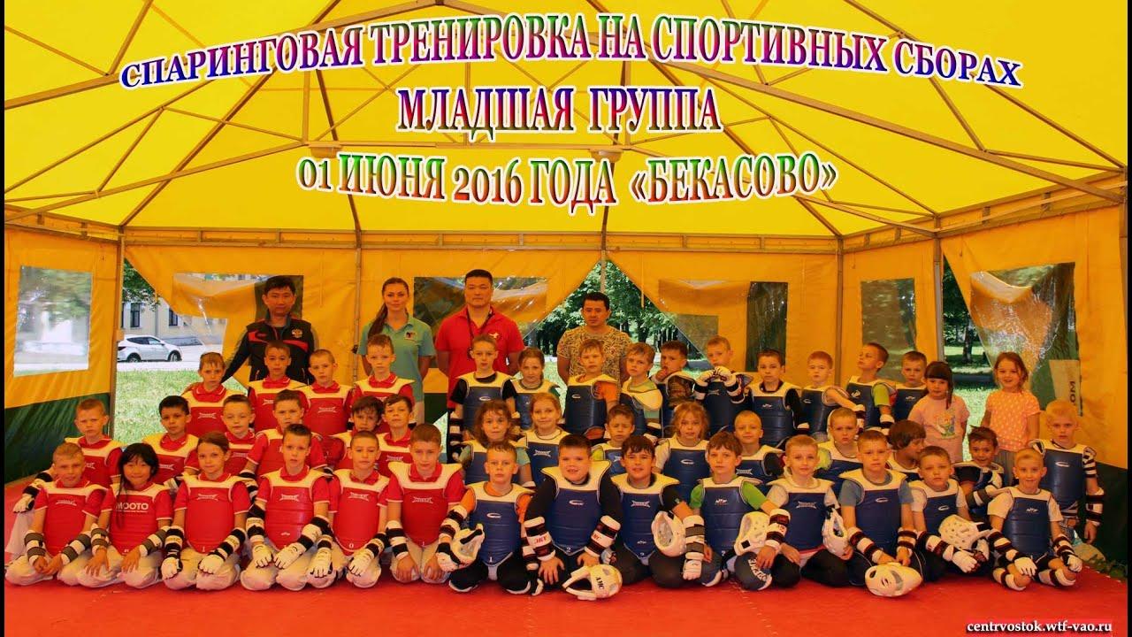 Спаринговая тренировка по Тхэквондо (ВТФ)