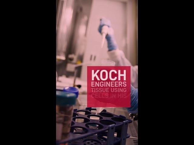 Koch Lab Regenerative Medicine