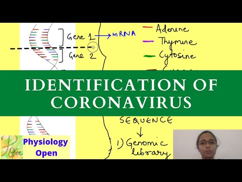 Genome Sequencing Coronavirus