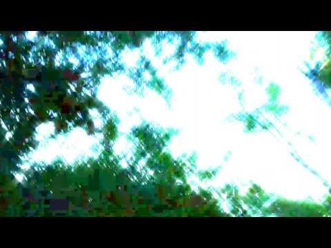 "Aphex twin - ""Rhubarb"""