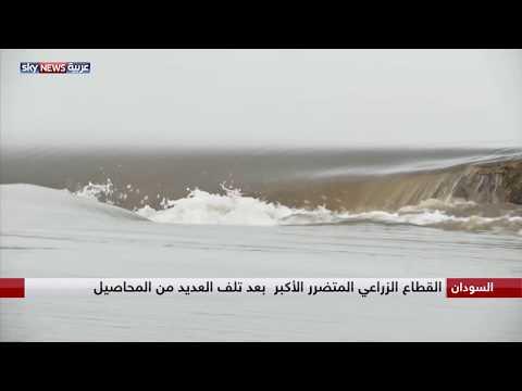 السودان.. فيضان نهر الدندر يفسد محاصيل مئات المزارعين  - 13:54-2018 / 9 / 9