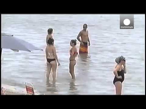 Cá ăn thịt người tấn công 70 nạn nhân