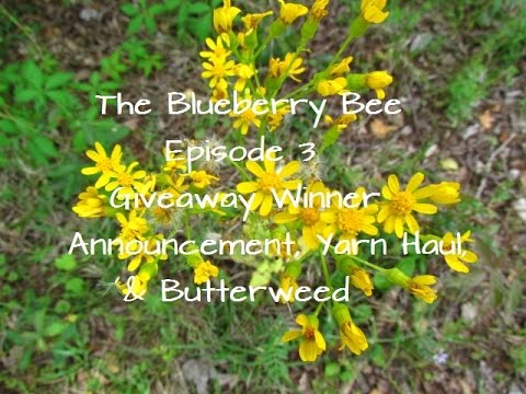 The Blueberry Bee Episode 3 Mp3