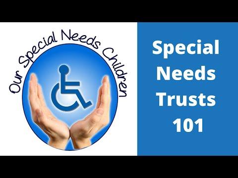 Special Needs Trust 101