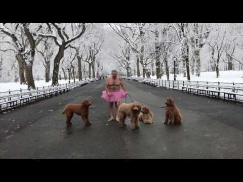 The Tutu Project Behind the Scenes: Four Dogs (and a Ballerina), Central Park, New York City