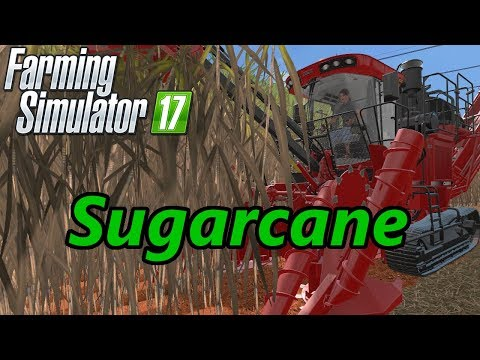 Farming Simulator 17 Tutorial | Sugarcane