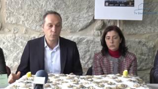 Soutomaior celebra esta semana a XXXI Festa da Ostra