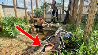 CATCHING ALL MY GATORS + DEEP CLEANING THE ENCLOSURE! *CRAZY*
