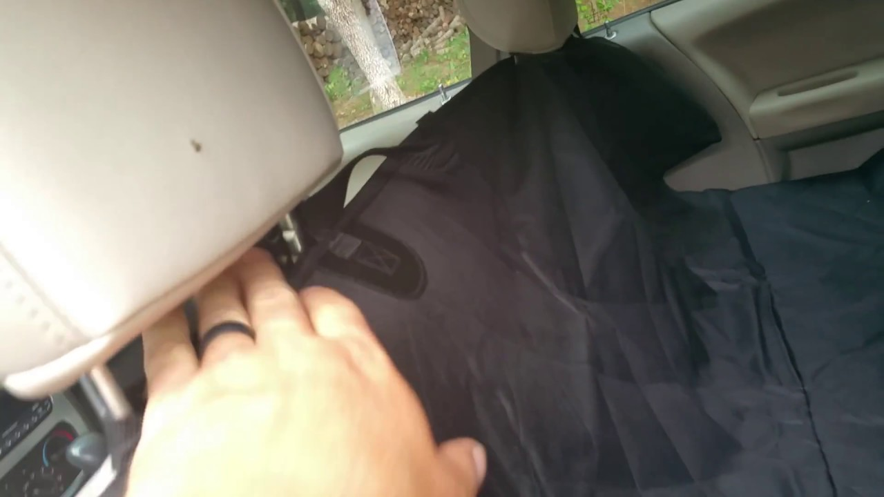 The 3 best dog seat covers for leather seats   Natural Dog Owner