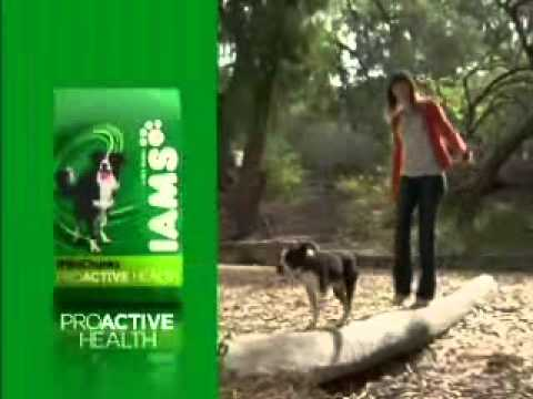 I'm An Iams Dog- ProActive Health