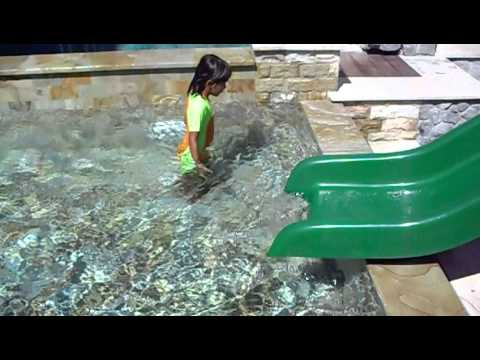 Swim with koi fish in swimming pool youtube for Koi swimming pool