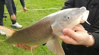 Первая рыба в этом году