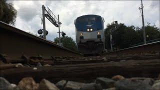 Fast Amtrak Silver Star runs over my camera