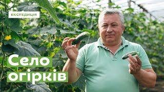 як зробити листя з огірка