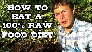 How You Can Easily Eat a 100% Raw Food Diet If You Desire