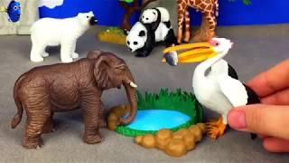 Животные для детей   Звуки животных для самых маленьких