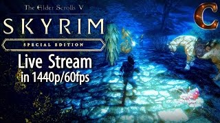 Skyrim Special Edition Live, in 1440p/60fps! Spider Forge of White Ridge, Lvl 60 Part 77 Legendary