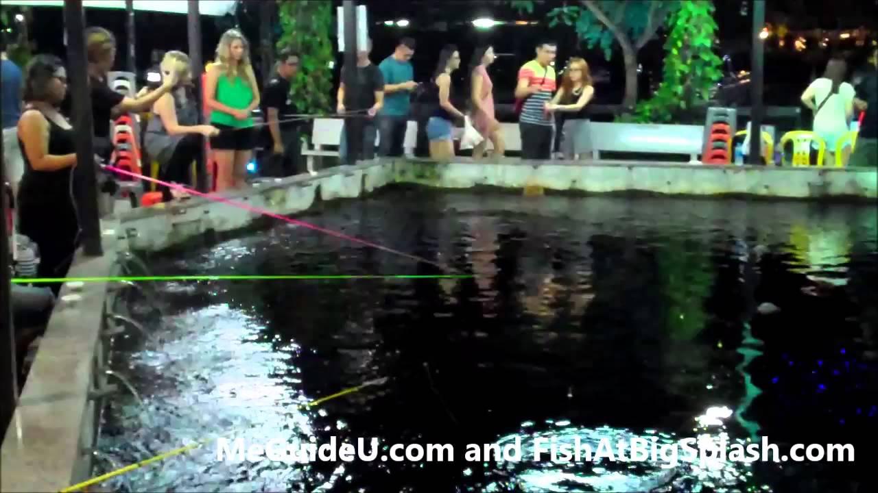 Prawn Fishing in Singapore - Big Splash