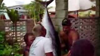 westside hawaii toad 240 yellowfin ahi tuna